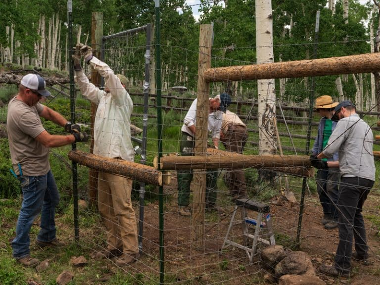 Gate Building Crew