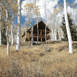 aspen at the residential wildland interface